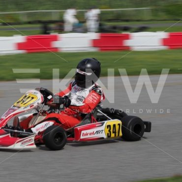 P8311527.jpg - KNW | KartingNewsWorldwide.com | Your latest racing news